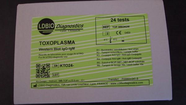Toxoplasma IgG/IgM